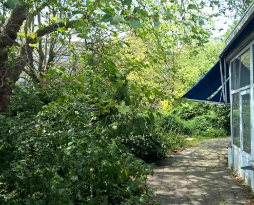 samenmedebuurt natuur haarlem schalkwijk buurthuis samenmetdebuurt