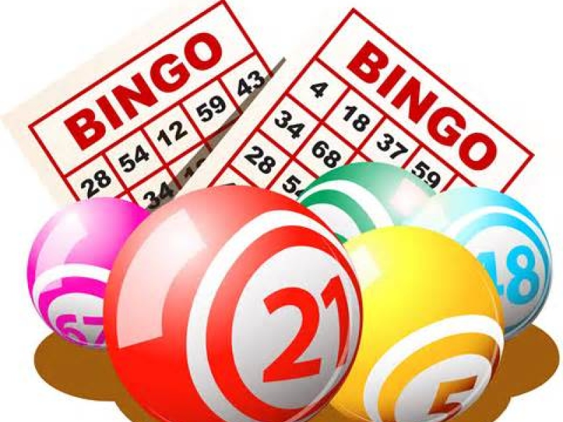 24 november 2015 bingo